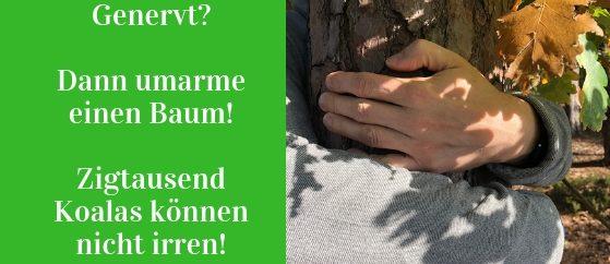 Bäume umarmen kann aber muss nicht