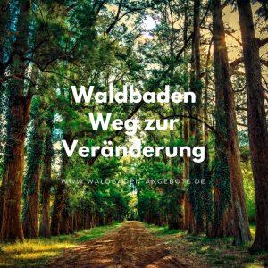 neue Wege durch Waldbaden
