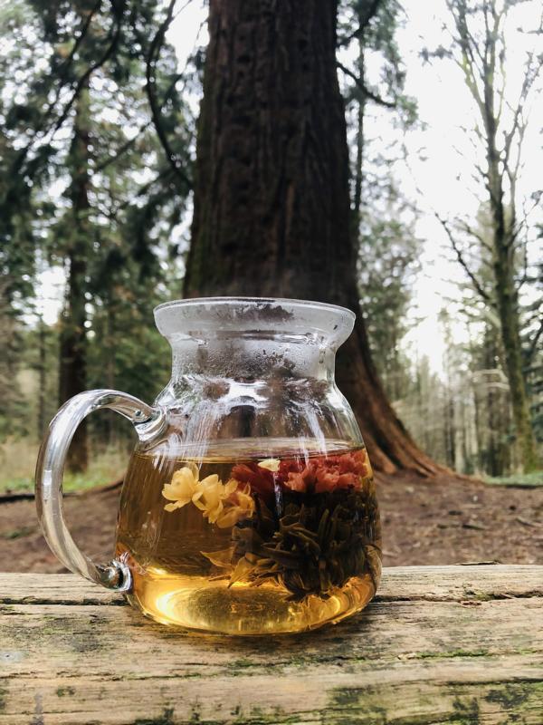 Teeblumen Zeremonie während eines Winter-Waldbads