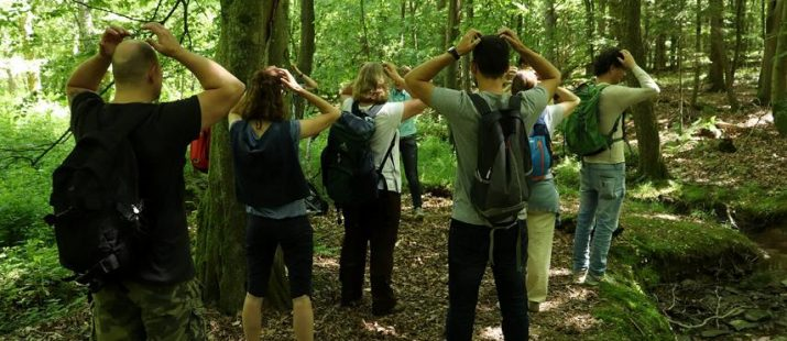 Waldbaden Klopftechnik Übung