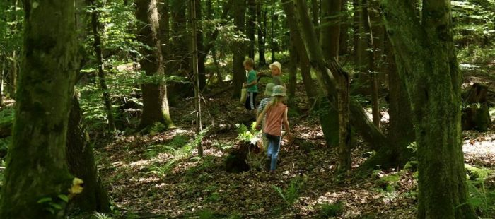 Waldbad mit Kinder