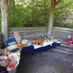 Waldpicknick im Anschluss an ein Waldbaden Event